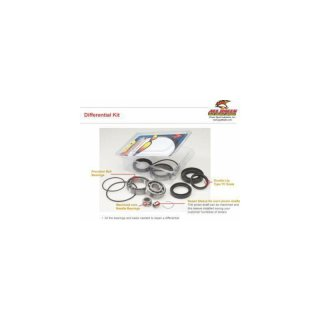 Differential Bearing - Seal Kit - Honda TRX420 FE/FM 07-12, TRX420 FPE 11-12, TRX420 FPM 11-12, TRX420 TE/TM 07-10