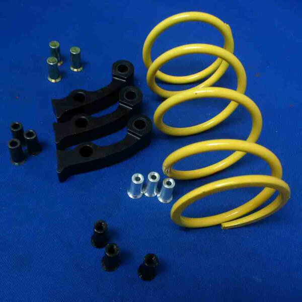 Dalton Clutches Pro Clutch Spring Kits for Automatic ATVs DPSS-M//R